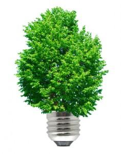 energie goede voornemens